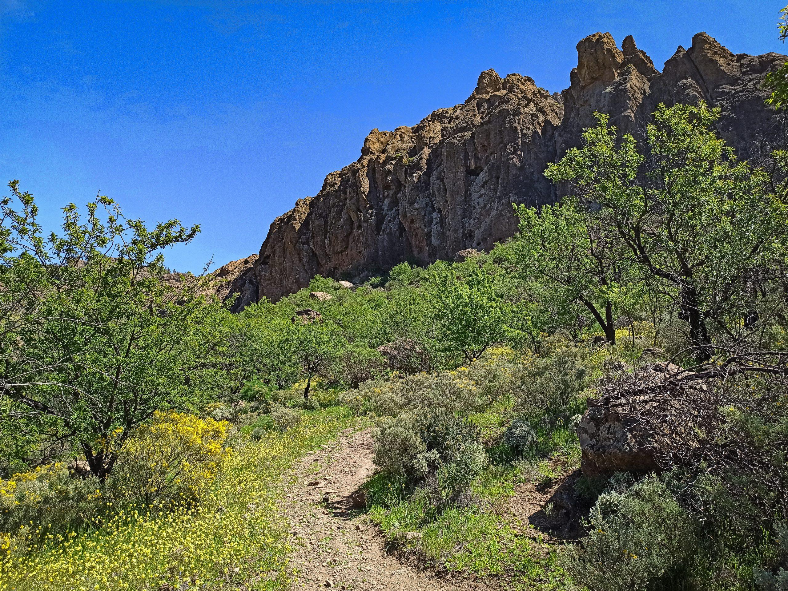 Klettern auf Gran Canaria - la Candelilla